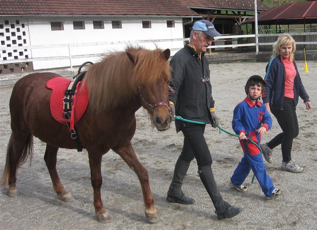 Terapija s pomočjo konja